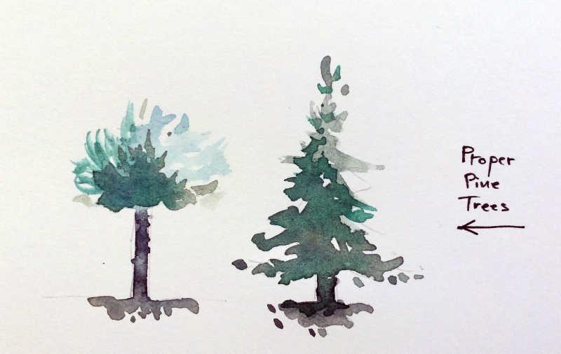 Pinus Europithecus